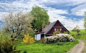 spring, cottage, house